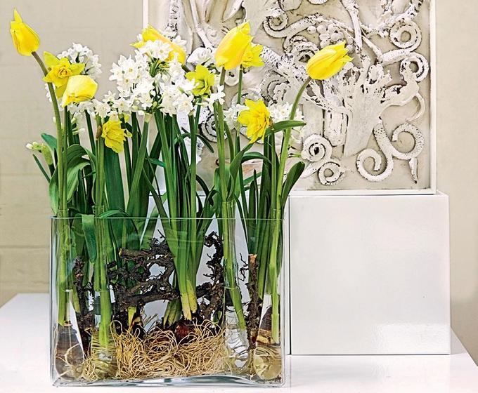 Wielkanocne Dekoracje Domu Dekoracje Dla Wymagających